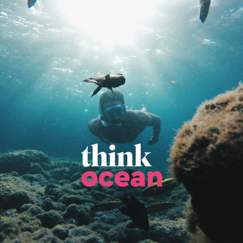 Think Ocean Graphic 1