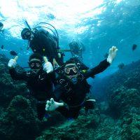 divers in the ocean