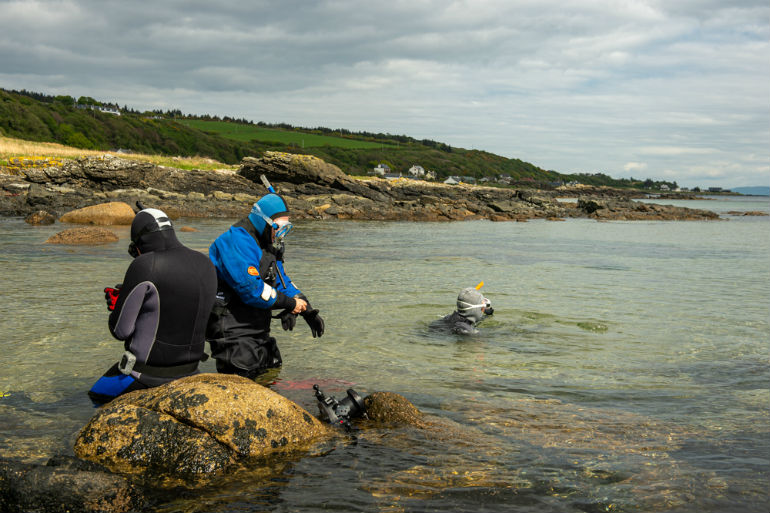 COAST-Community-Arran-Seabed-Trust-seagrass