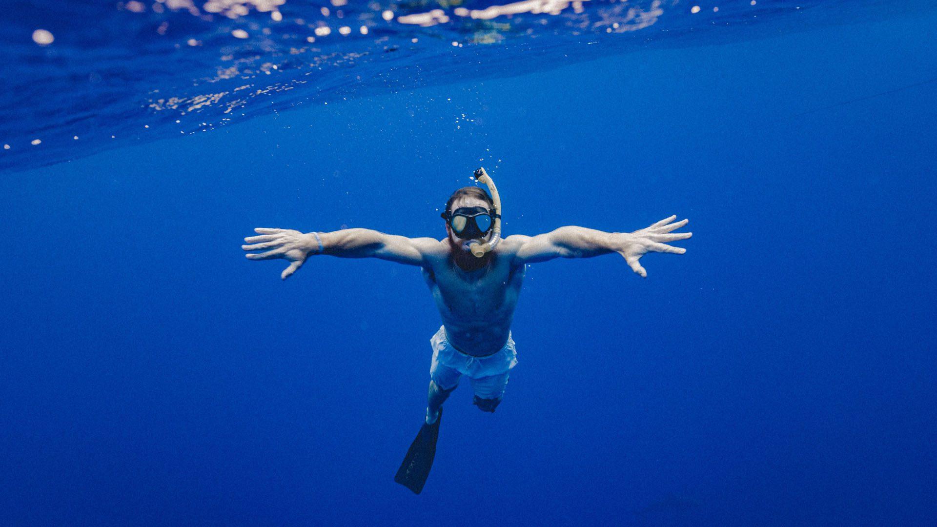 snorkel in the ocean