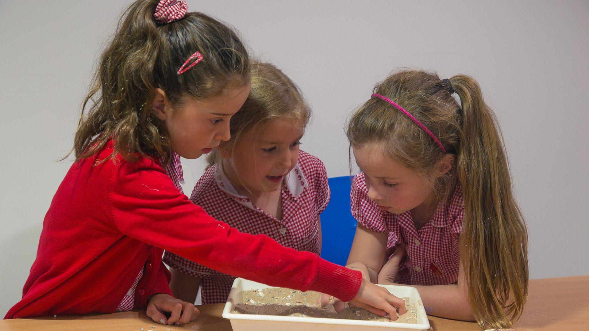 south wales schools